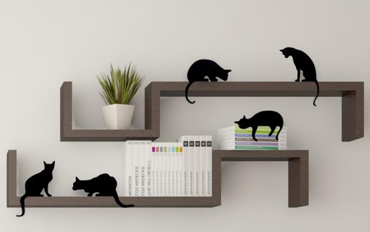 חתולים על מדף